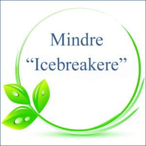 "Mindre ""Icebreakere"""