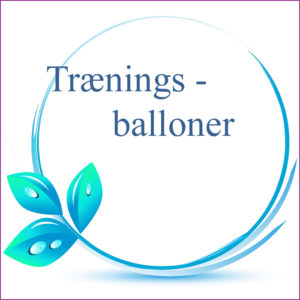 Træningsballon