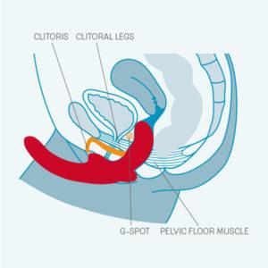 ShareVibe double dildo med vibrator